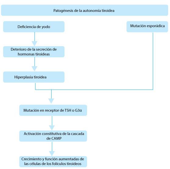 Definicion de hipertiroidismo e hipotiroidismo