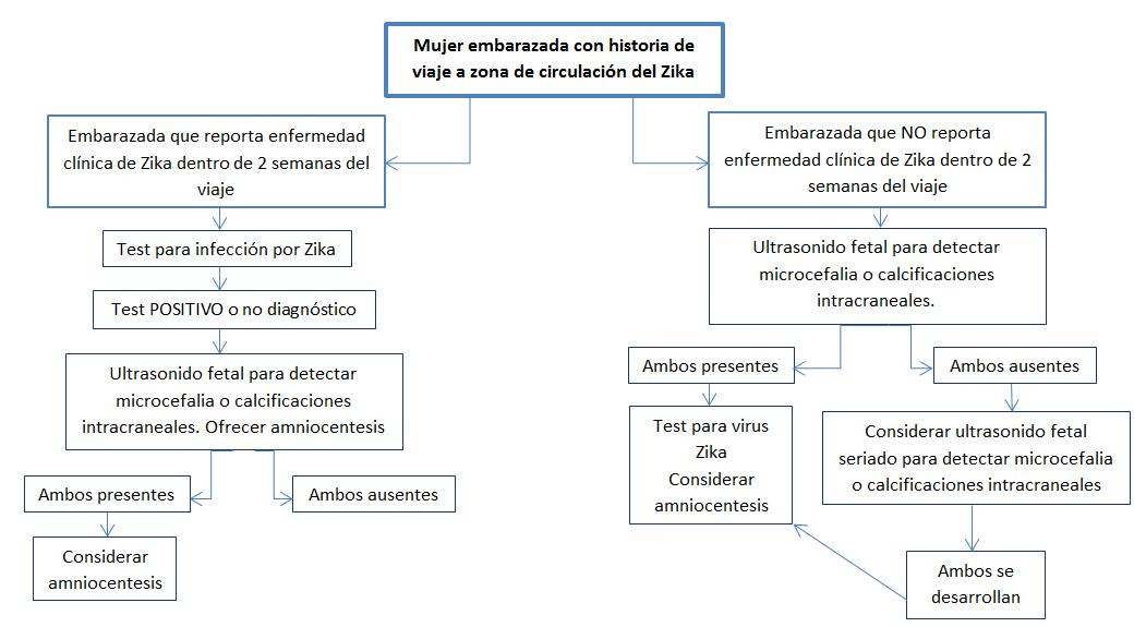 Cómo actuar ante embarazadas con riesgo de enfermedad por virus Zika ...