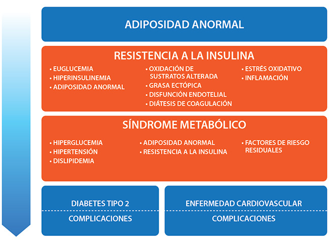 disfunción endotelial diabetes tipo 1