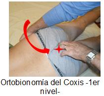 Coxigodinia Semiología Diagnóstico Y Tratamiento Artículos Intramed